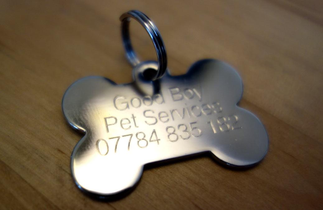 Good boy pet services dog tag